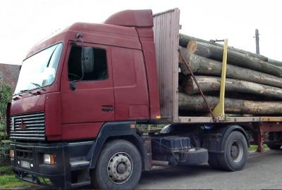 На Буковині затримали вантажівку з нечіпованим лісом