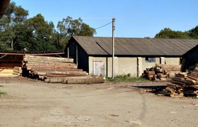 Буковинці повідомили поліцію про немаркований ліс на одній з пилорам