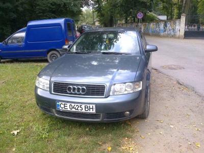 Посадовець заявив, що поліція в Чернівцях не справляється з порушниками паркування