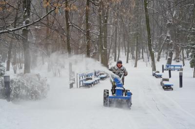 Зиму прогнозують суворою та сніжною