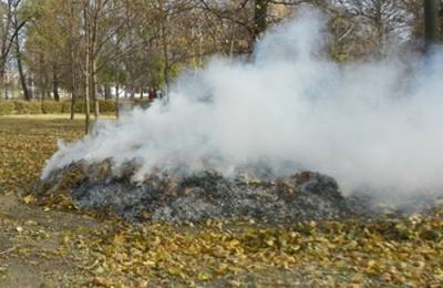 Мерія нагадує: за спалювання сухого листя штраф до 1300 гривень
