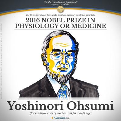Нобелівську премію з медицини отримає японець Осумі за дослідження в області автофагії