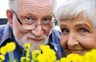 Вчені назвали бюджетний продукт, який сприяє довголіттю