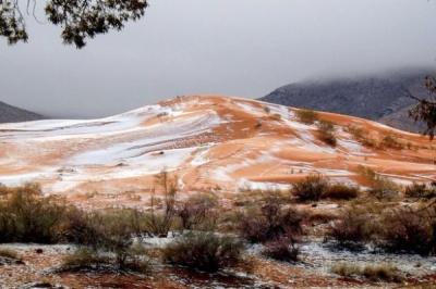 В пустелі Сахара вперше за 37 років випав сніг