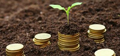На Буковині виплата за паї трохи перевищила тисячу гривень за гектар