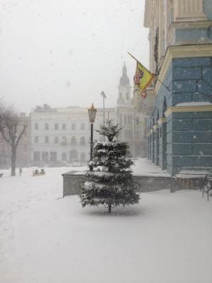 Чернівці засипало снігом: жителі міста діляться світлинами в соцмережах