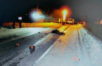 Смертельное ДТП на Буковине: водитель автомобиля наехал на мужчину