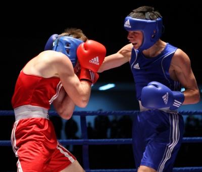 Головний континентальний боксерський форум цього року відбудеться в Україні