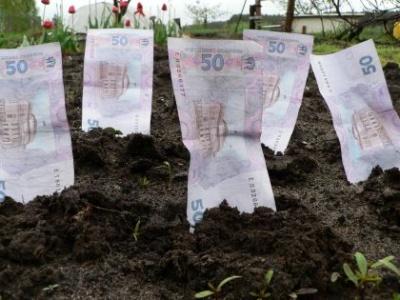 За месяц буковинцы заплатили за землю на 6,5 млн гривен больше чем в прошлом году