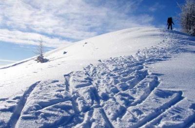 Буковинцы отличились на чемпионате Украины по лыжному туризму