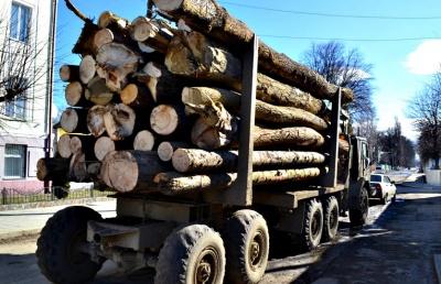 На Буковині знову затримали лісовоз з нечіпованою деревиною