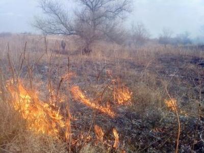На Буковине горят гектары травы - огонь угрожает домам и лесам