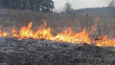 Из-за сжигания сухой травы в двух селах на Буковине чуть не загорелись здания