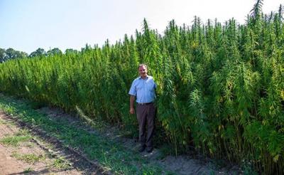 В Україні відкривають перший в Європі центр терапії марихуаною