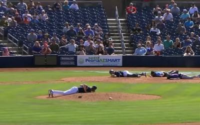 Всім лежати. Бджоли атакували бейсболістів під час матчу в США - відео