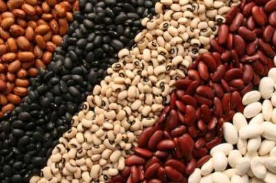 Вчені назвали їжу, яка сприяє продовженню життя