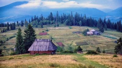 Вчені розповіли, як відпочинок у селі впливає на емоційне здоров'я