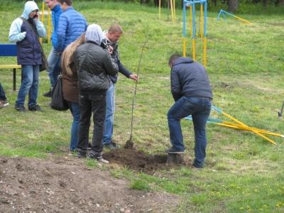 В самом парке Черновцов высадили молодые дубы в памяти  'память о погибших на Востоке буковинцев (ФОТО)
