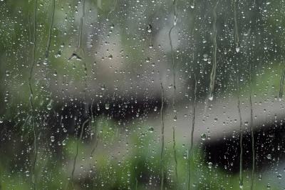 У Чернівцях вихідні будуть прохолодними і з дощем