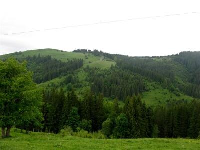 Озеро з «кратера» та найбільший водоспад виявили краєзнавці на Буковині