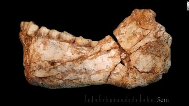 Вчені знайшли найстаріші останки Homo sapiens