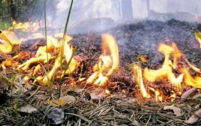 На выходных на территории Украины - высокая пожарная опасность