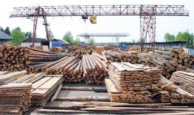 Прокуратура підозрює керівництво двох лісгоспів на Буковині у зловживаннях при тендерах на оренду лісовозів