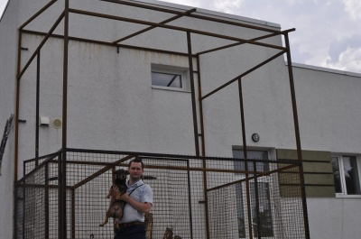 В Черновцах создали помещение для котов (ФОТО)