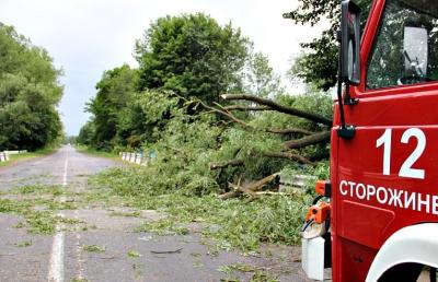 Ураган на Буковине валил деревья и срывал крыши (ФОТО)