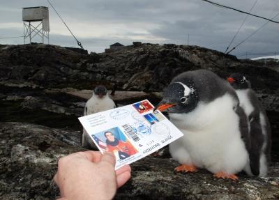 Черновчанин открыл выставку своих фото из Антарктиды