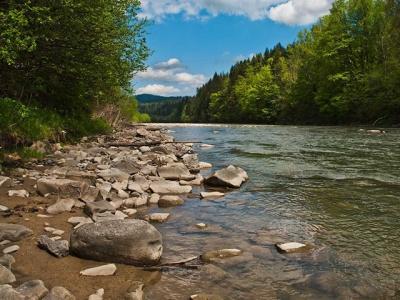 На Буковині у річці Прут потонув юнак