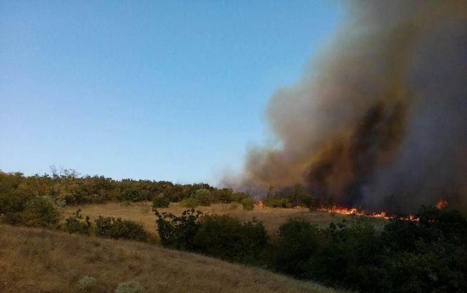 УМиколаївській області спалахнула масштабна лісова пожежа