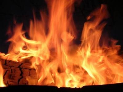 На Буковині згорів екскаватор
