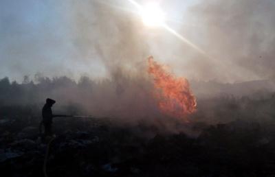 У Сторожинці загорілося сміттєзвалище (ФОТО)