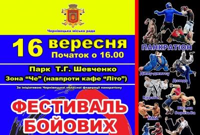 20 клубів єдиноборств у Чернівцях проведуть Фестиваль бойових мистецтв