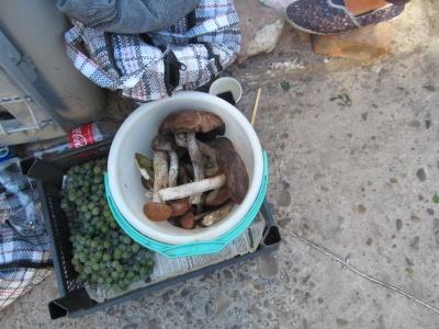 На ринках Чернівців з'явилися гриби: продають від 30 до 130 грн за кілограм