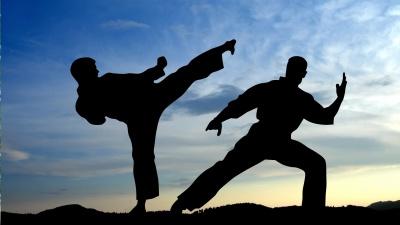У Чернівцях відбудеться фестиваль бойових мистецтв