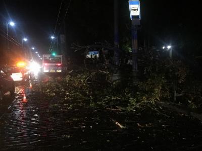 У поліції закликали чернівчан без потреби не виходити на вулицю через погіршення погодніх умов