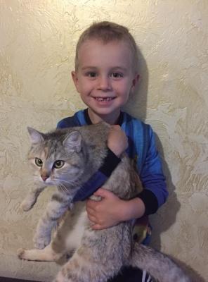 У Чернівцях врятували кішку, що просиділа на дереві чотири дні