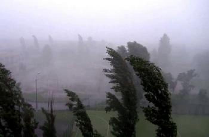 Буревій у Яблуневі залишив населений пункт без освітлення на декілька годин