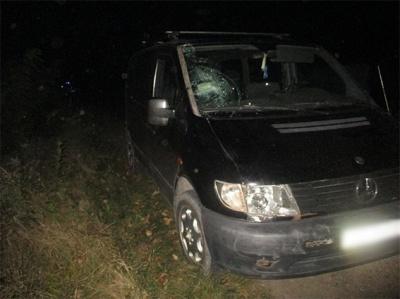 У Чернівецькій області мікроавтобус збив велосипедиста: чоловік загинув на місці
