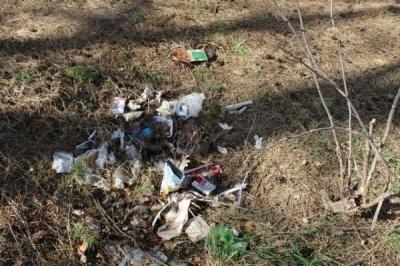 У Чернівцях ліквідували понад 250 стихійних сміттєзвалищ