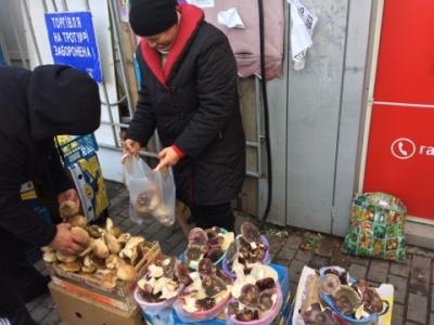 «Якщо не буде морозів, збиратиму до Різдва»: на Буковині фіксують грибний бум (ФОТО)