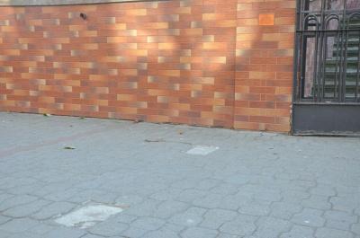 У Чернівцях масово зникають туристичні «їжачки»
