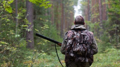 Мисливський сезон: дозволено полювати на кабана, козулю та оленя