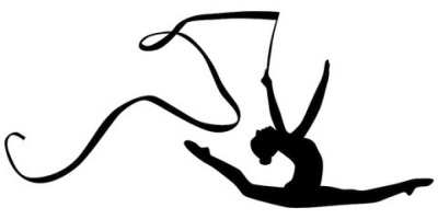 Буковинські гімнастки здобули дві медалі на чемпіонаті України