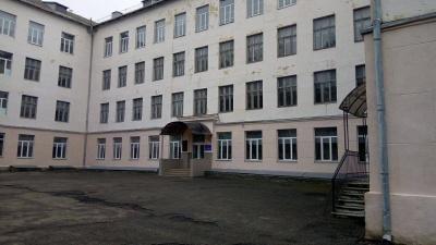 У Чернівцях депутати виявили на території ліцею свиней та курей (ВІДЕО)