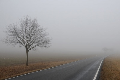 Буковинців попереджають про сильний туман