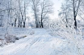 У вихідні в Чернівцях йтиме сніг та стане холодніше