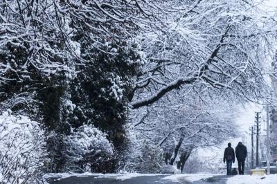 Рятувальники попередили про погіршення погодних умов у трьох областях, серед яких – Буковина